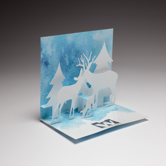 Red Paper Plane's Snow Scene Holiday Card features an intricate staged holiday design.