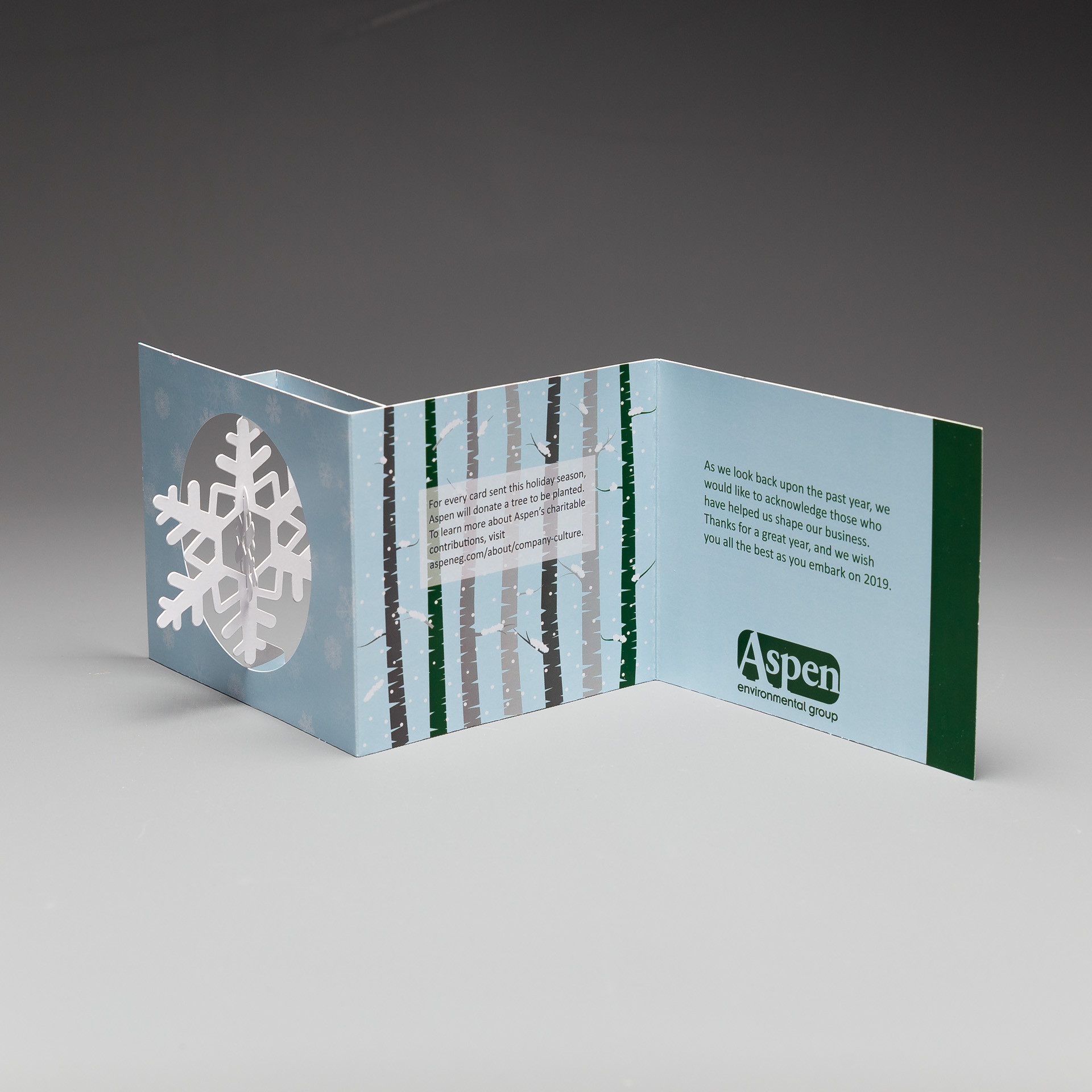 Aspen Environmental Group Sends a Holiday Greeting that Lasts